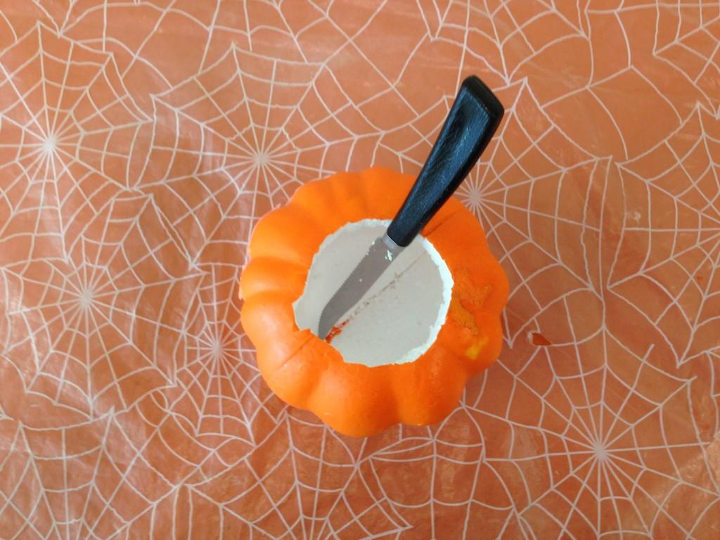Pumpkin-Cano (3)