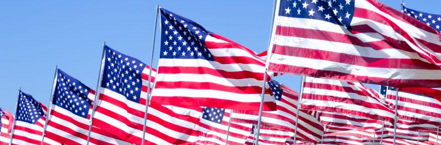 31675029 - american flags background on a green field